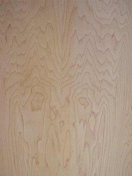 Pre-Finished Birch Plywood